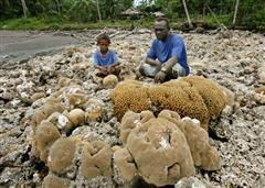 Coral exposed by lifting